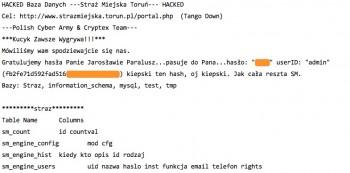 Straż Miejska w Toruniu - kradzież danych