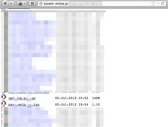 Korwin Mikke UPR Wolność i Praworządność e-maile