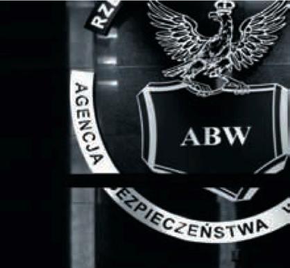 abw-raport-2013
