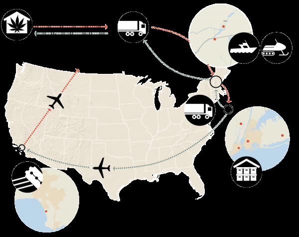 Infografika przedstawiająca siatkę połączeń szmuglerów i dilerów fot. NY Times