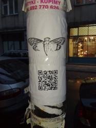 Plakat Cicady w Warszawie