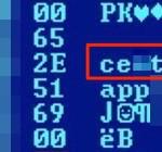 Fragment nazwy komputera sugerującego przynależność do firmy, która wygrała przetarg na stworzenie Projektu 29