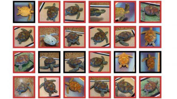 Zdjęcia żółwi z kropkami. Dla ciebie to żółwie, dla AI karabiny :)